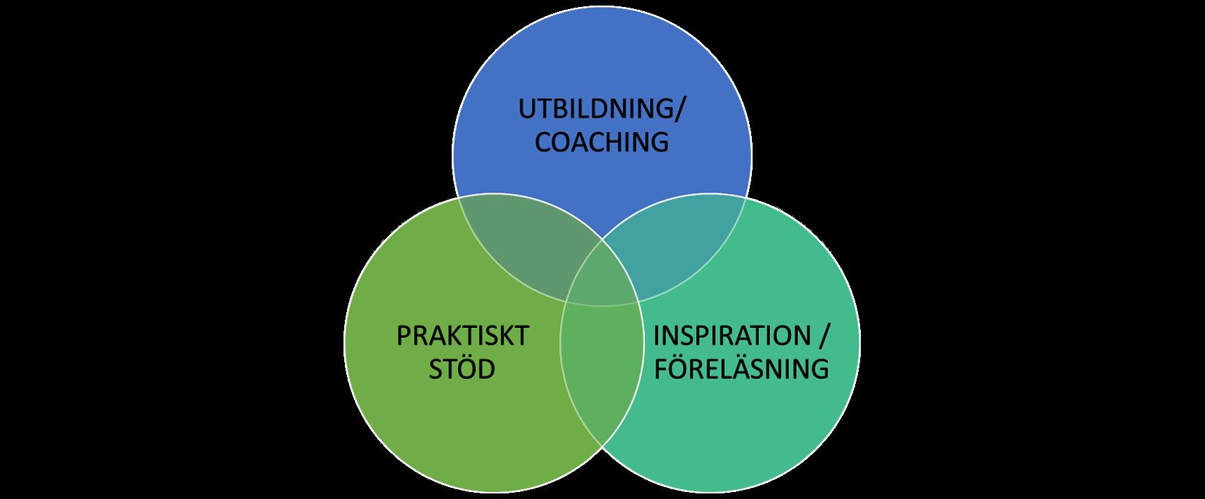 verksamhetsutveckling utbildning konsult föreläsningar praktiskt stöd lean six sigma ledarskap